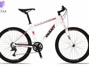 2020 ATX 618 - Trang-8tr5507