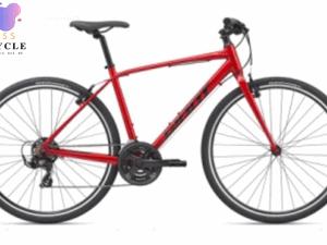 Xe đạp GIANT 2020 ESCAPE 3